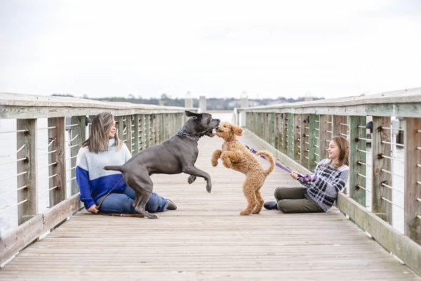 Charleston dog photo 2 girls and their dogs sitting on the bridge together