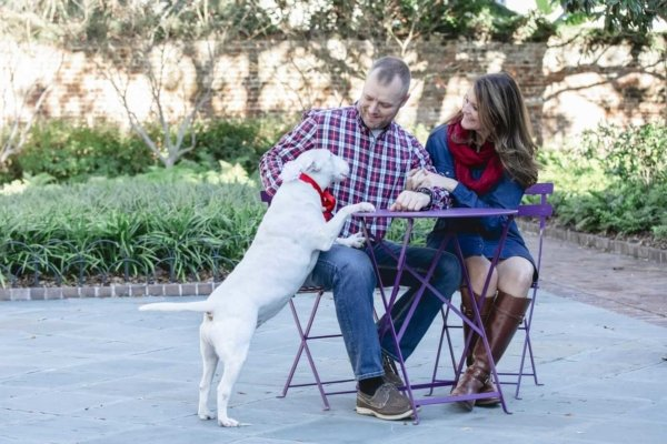 Charleston dog photo couple and their big dog sitting near table
